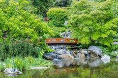 Jardim japonês bonito em Viena foto de stock royalty free