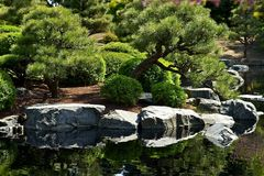 Jardim japonês com lagoa Imagens de Stock