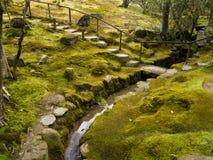 Jardim japonês do musgo Fotos de Stock Royalty Free
