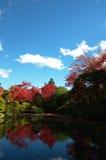 Jardim japonês do zen Imagem de Stock Royalty Free