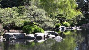 Jardim japonês em Denver Botanic Gardens video estoque