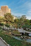 Jardim japonês em Monte - Carlo Foto de Stock