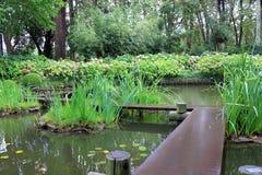 Jardim japonês em Uruguai, Montevideo Foto de Stock