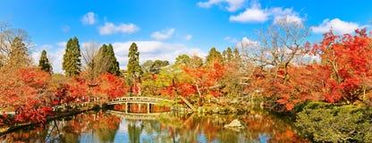 Jardim japonês no outono em Kyoto, Japão Fotografia de Stock Royalty Free