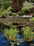 Jardim japonês no parque estadual dos acres da costa Fotos de Stock Royalty Free