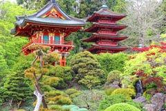 Jardim japonês, San Francisco Foto de Stock