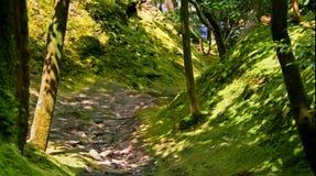 Jardim mágico Imagem de Stock Royalty Free