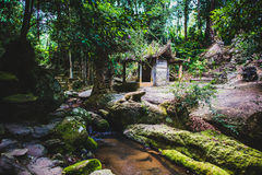 Jardim mágico em Koh Samui fotos de stock