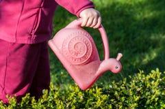 Jardim molhando da criança com a lata molhando cor-de-rosa Imagem de Stock Royalty Free
