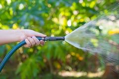 Jardim molhando de trabalho da mangueira imagens de stock royalty free