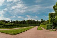 Jardim na cidade de Petergof Fotografia de Stock