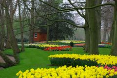 Jardim na mola Fotografia de Stock Royalty Free