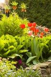 Jardim na mola imagens de stock royalty free