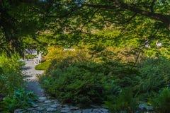 Jardim no monte de Petrin Fotografia de Stock