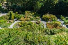 Jardim no monte de Petrin, Praga Foto de Stock