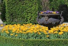 Jardim no palácio de Schonbrunn em Viena, Áustria Fotografia de Stock Royalty Free