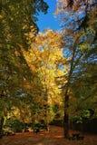 Jardim no parque nacional de Peneda Geres fotos de stock royalty free