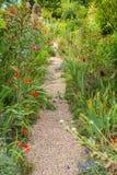 Jardim no verão Imagem de Stock Royalty Free