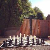 Jardim no verão Imagens de Stock Royalty Free