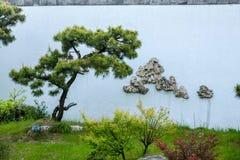 Jardim ocidental delgado dos bonsais do lago Yangzhou Imagens de Stock