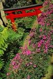 Jardim oriental. Madeira Foto de Stock Royalty Free