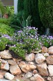 Jardim ornamental do jardim fotografia de stock royalty free