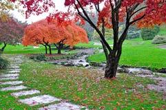 Jardim outonal sob chover Imagens de Stock Royalty Free