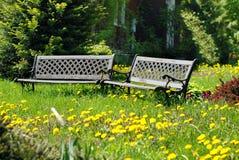 Jardim Overgrown Fotos de Stock Royalty Free