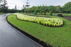 Jardim público fotografia de stock royalty free