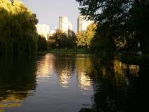 Jardim público comum de Boston imagens de stock royalty free