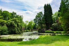 Jardim público inglês no verão fotografia de stock