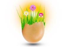Jardim pequeno com grama verde e flores de lótus na casca de ovo isolada no fundo branco Imagens de Stock