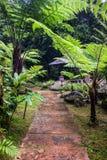 Jardim perto da cachoeira de Siriphum Fotos de Stock Royalty Free