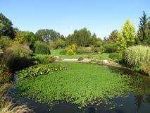 Jardim romântico fotografia de stock royalty free