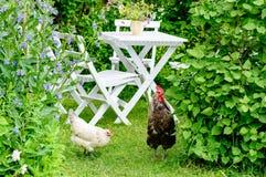 Jardim romântico fotografia de stock