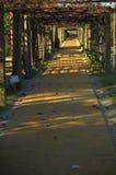 Jardim romano Foto de Stock Royalty Free