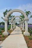 Jardim roxo da alfazema do vale no Pequim Fotos de Stock Royalty Free