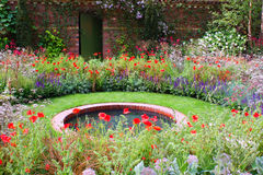 Jardim selvagem Foto de Stock Royalty Free