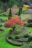 Jardim Sunken em jardins do butchart Fotografia de Stock