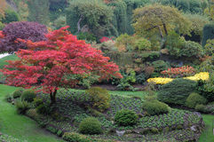 Jardim Sunken na queda Foto de Stock