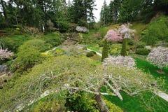 Jardim Sunken victoria bc Fotografia de Stock Royalty Free