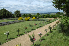 Jardim traseiro Foto de Stock Royalty Free