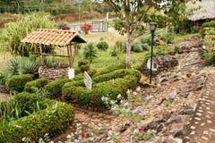 Jardim tropical Foto de Stock Royalty Free