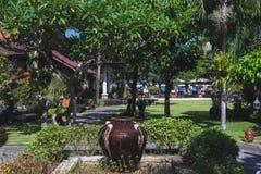 Jardim tropical bonito com uma fonte, umas palmeiras e umas cores verdes verão verde luxúria Imagem de Stock Royalty Free