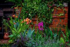 Jardim tropical bonito durante a estação de mola imagem de stock royalty free