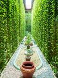 Jardim tropical do Balinese com fonte fotografia de stock