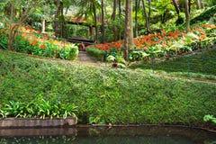 Jardim tropical do palácio de Monte Funchal, console de Madeira Imagem de Stock