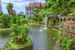 Jardim tropical do palácio de Monte Funchal, Madeira, Portugal Fotografia de Stock