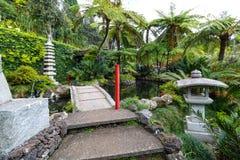 Jardim tropical Madeira Fotos de Stock