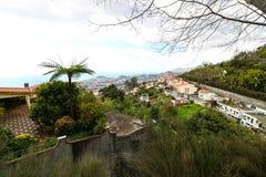 Jardim tropical Madeira Fotografia de Stock